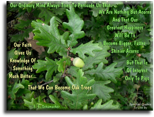 E.F. Schumacher quote: Our ordinary mind always tries to persuade us that we are nothing but acorns and that our greatest happiness will be to become.. - Spiritual Quotes To Live By