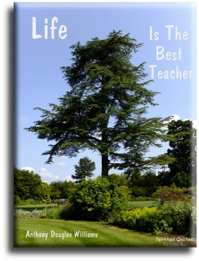 Anthony Douglas Williams quote: Life is the best teacher. - Spiritual Quotes To Live By
