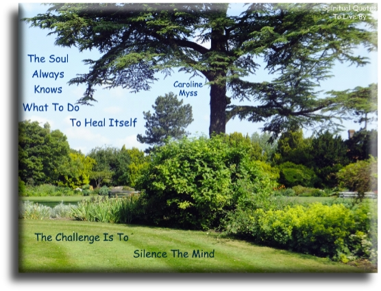Caroline Myss quote: The Soul always knows what to do to heal itself. The challenge is to silence the mind. - Spiritual Quotes To Live By