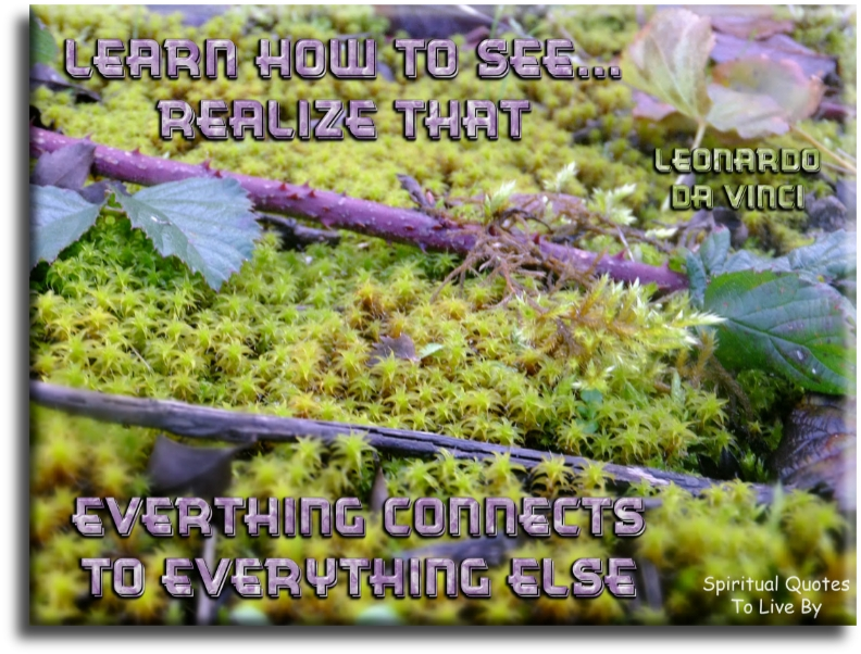 Leonardo da Vinci quote: Learn how to see. Realize that everything connects to everything else. - Spiritual Quotes To Live By
