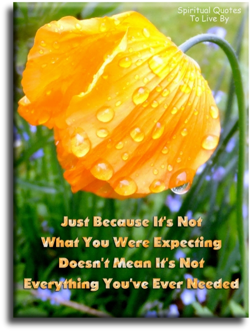 Just because it's not what you were expecting, doesn't mean it's not everything you've ever needed. - (unknown) Spiritual Quotes To Live By