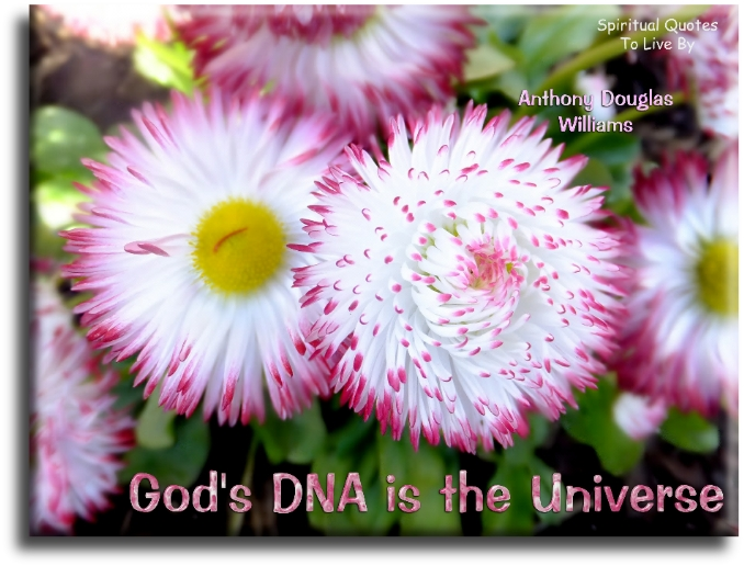 Anthony Douglas Williams quote: God's DNA is the Universe. - Spiritual Quotes To Live By