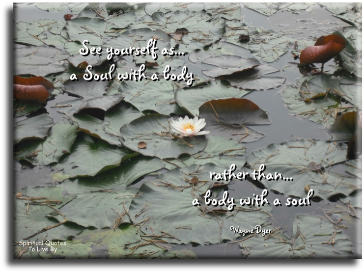 Wayne Dyer quote: See yourself as a Soul with a body, rather than a body with a Soul. - Spiritual Quotes To Live By
