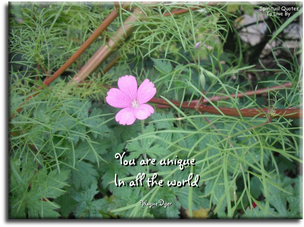 Wayne Dyer quote: You are unique in all the world. - Spiritual Quotes To Live By