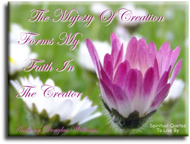 Anthony Douglas Williams quote: The majesty of creation forms my faith in the Creator. - Spiritual Quotes To Live By