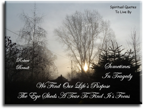 Sometimes in tragedy we find our life's purpose the eye sheds a tear to find its focus - Robert Brault - Spiritual Quotes To Live By
