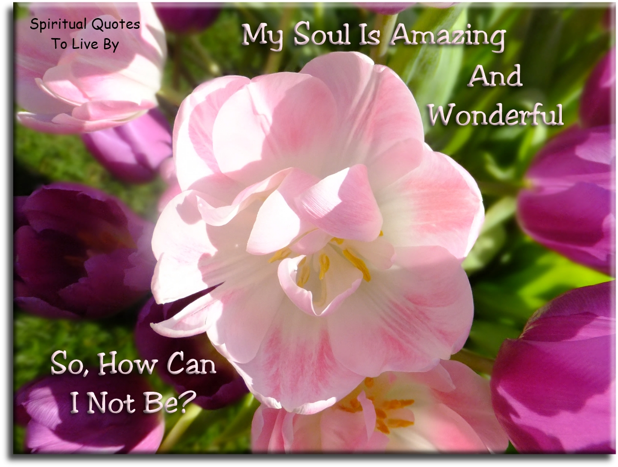 My Soul is amazing and wonderful, so how can I not be? - Spiritual Quotes To Live By