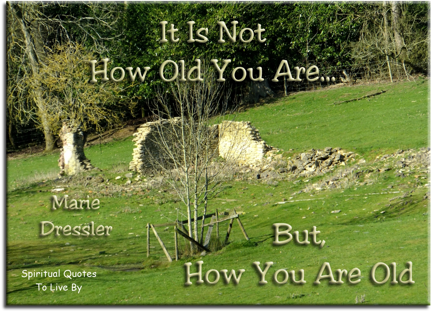 Marie Dressler quote: It is not how old you are... but how you are old. Spiritual Quotes To Live By