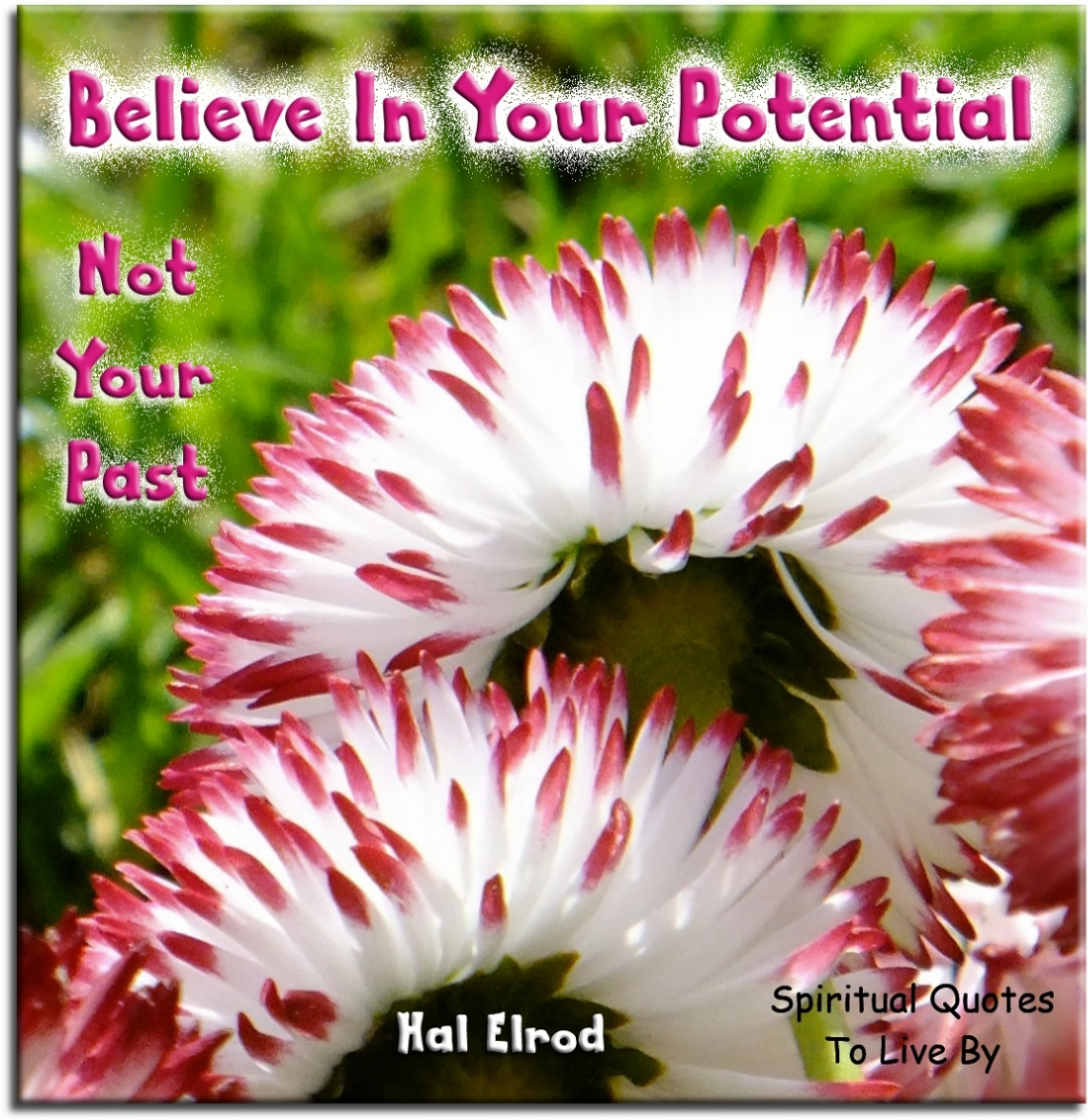 Hal Elrod quote: Believe in your potential...  not your past. Spiritual Quotes To Live By