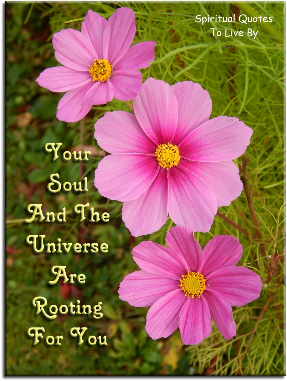 Your Soul and the Universe are rooting for you. (unknown) - Spiritual Quotes To Live By