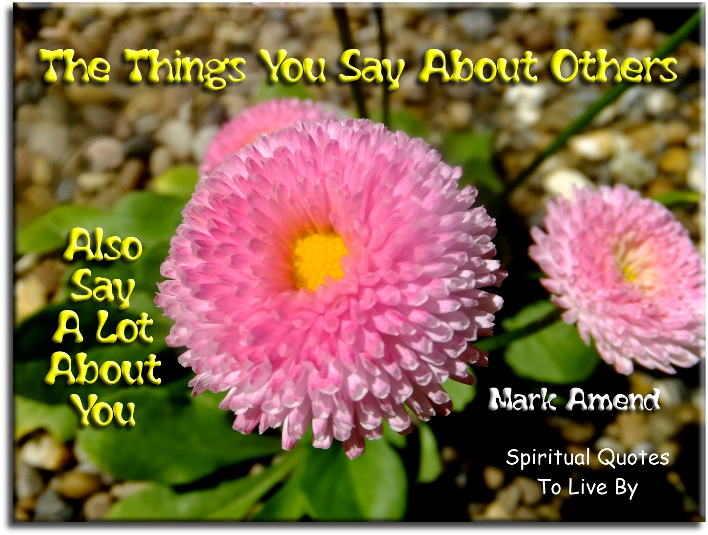 Mark Amend quote: The things you say about others, also say a lot about you.- Spiritual Quotes To Live By