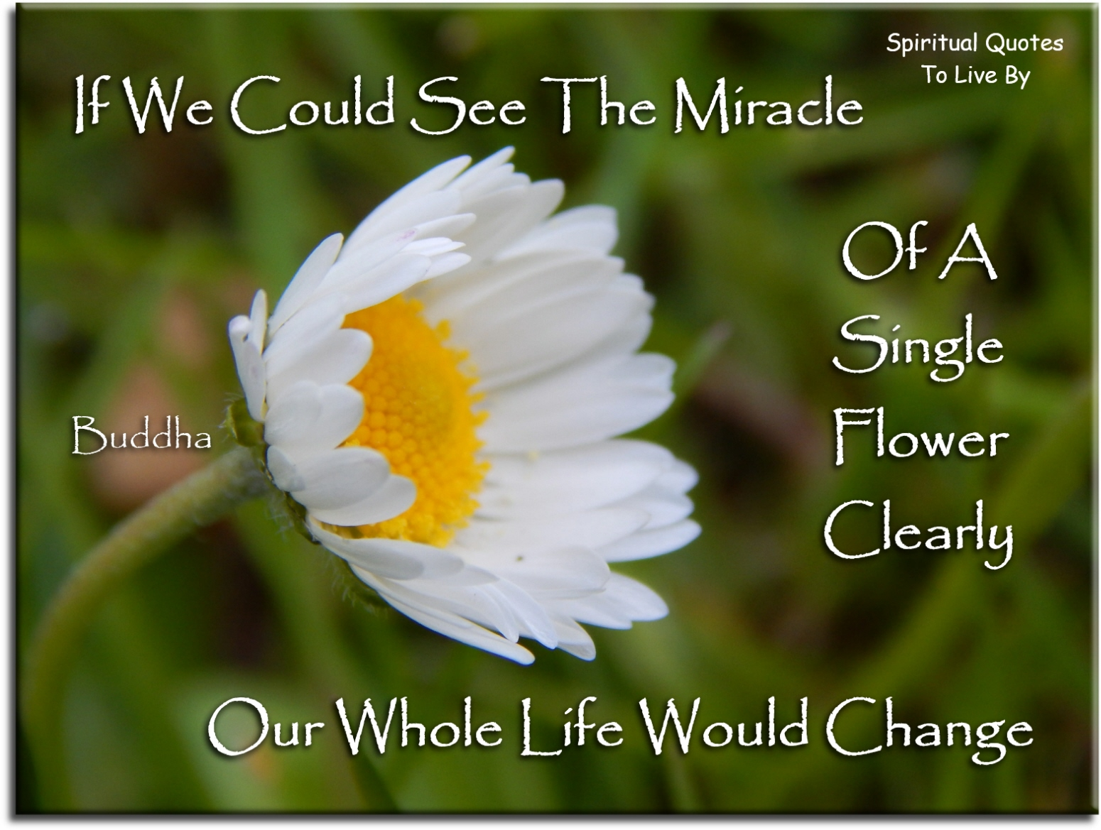 Spiritual Quotes About Life Changes Quotes About Life To Live By