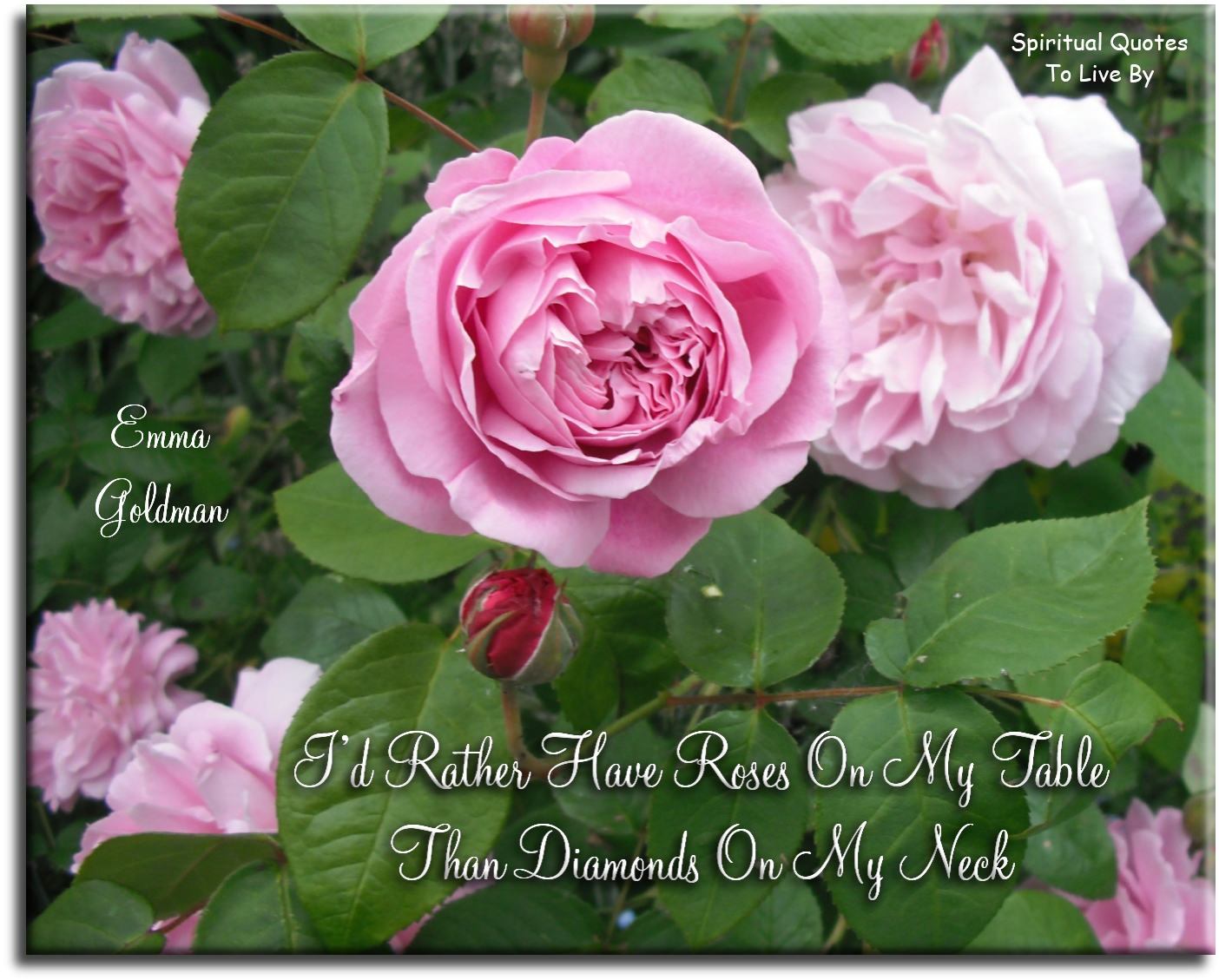 Emma Goldman quote: I'd rather have roses on my table than diamonds on my neck. Spiritual Quotes To Live By