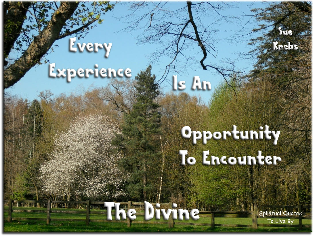 Sue Krebs quote: Every experience is an opportunity to encounter the Divine - Spiritual Quotes To Live By