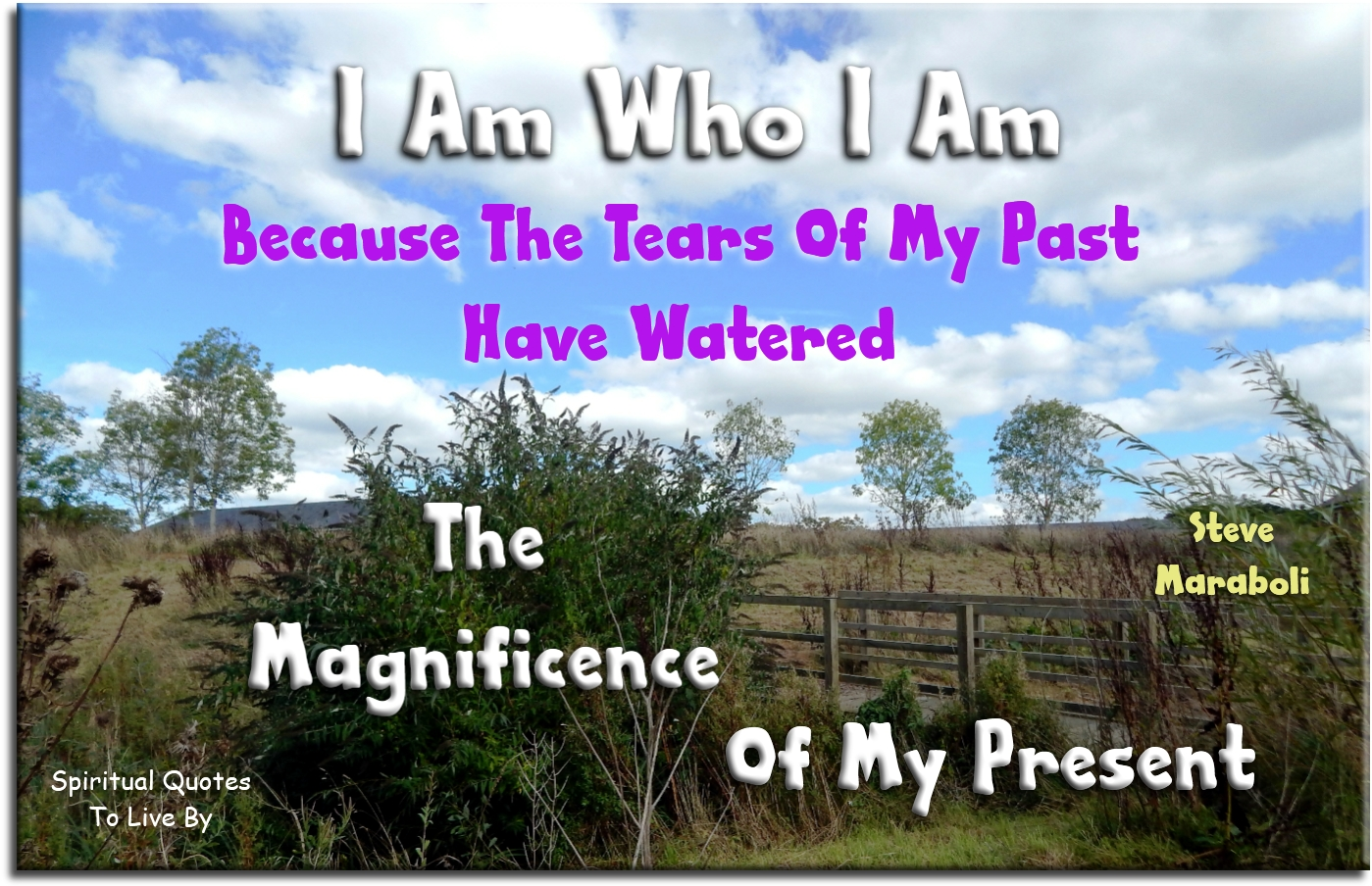 I am who I am because the tears of my past have watered the magnificence of my present - Stever Maraboli - Spiritual Quotes To Live By