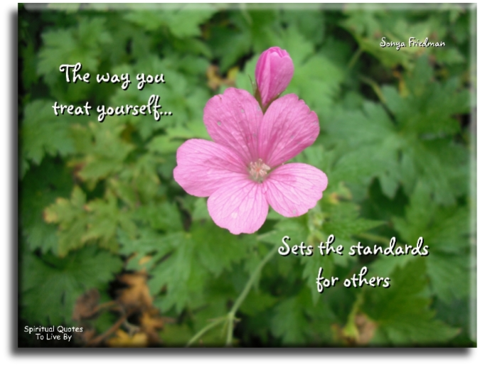 The Way You Treat Yourself Sets The Standards For Others   Sonya Friedman   Spiritual  Quotes