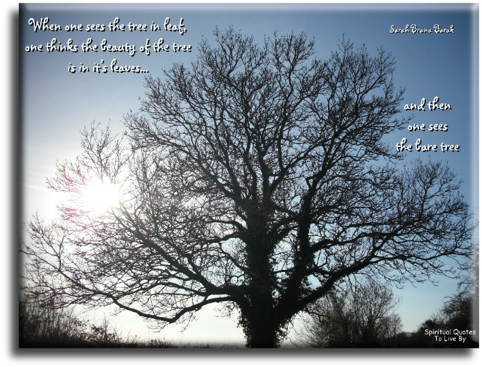 Sarah Brana Barak quote: When one sees the tree in leaf, one thinks the beauty of the tree is in it's leaves, and then one sees the bare tree. - Spiritual Quotes To Live By