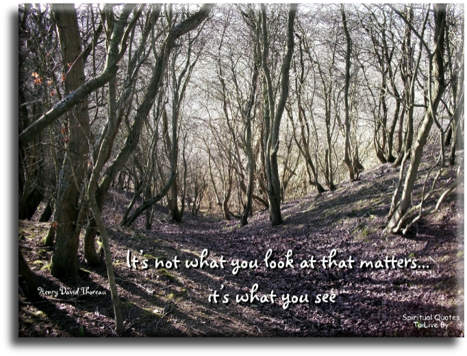 Henry David Thoreau quote: It's not what you look at that matters, it's what you see - Spiritual Quotes To Live By