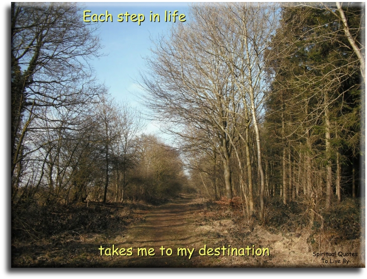 Each step in life...takes me to my destination. - (unknown) - Spiritual Quotes To Live By