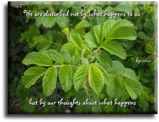 Epictetus quote: We are disturbed, not by what happens to us, but by our thoughts about what happens.- Spiritual Quotes To Live By