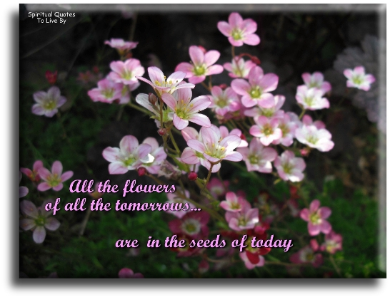 All the flowers of all the tomorrows are in the seeds of today - Spiritual Quotes To Live By