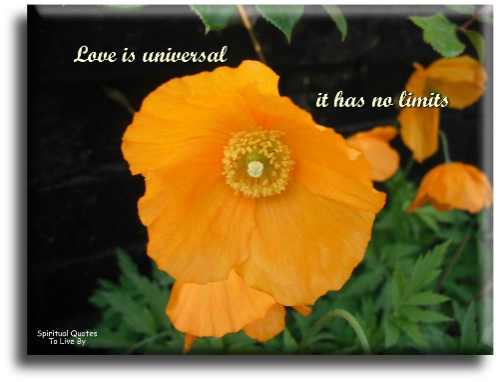 Love is universal, it has no limits - Spiritual Quotes To Live By