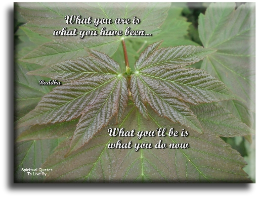 What you are is what you have been, what you'll be is what you do now - Buddha - Spiritual Quotes To Live By