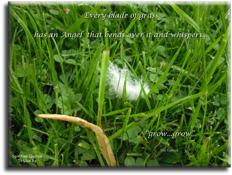 Every blade of grass has an angel that beds over it and whispers, 'grow, grow' - Talmud - Spiritual Quotes To Live By