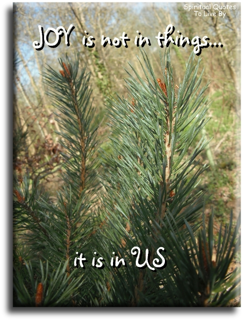 Joy is not in things... it is in us.- Spiritual Quotes To Live By