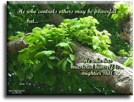 Lao Tzu quote: He who controls others may be powerful, but he who has mastered himself is mightier still. - Spiritual Quotes To Live By