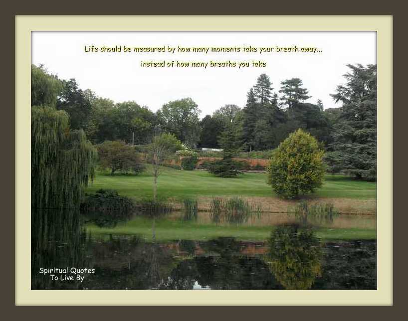 trees by lake photograph with quote