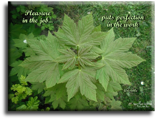 Aristotle quote: Pleasure in the job puts perfection in the work. Spiritual Quotes To Live By