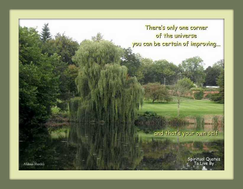 quote on photograph of weeping willow over lake