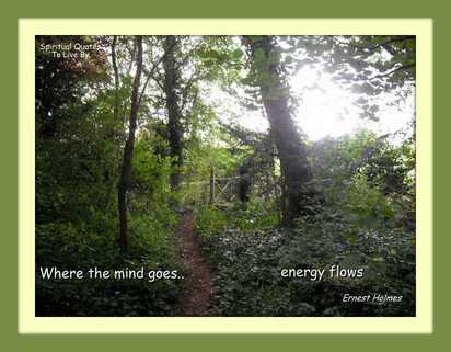 Where the mind goes - BLOG