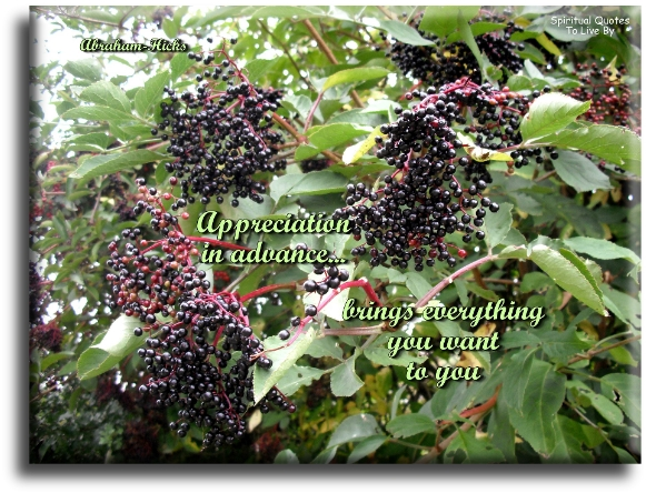 Appreciation in advance brings everything to you - Abraham-Hicks - Spiritual Quotes To Live By