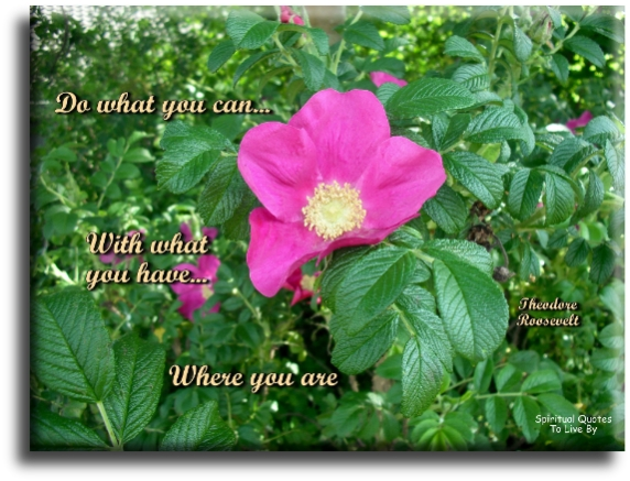 Do what you can with what you have, where you are - Theodore Roosevelt - Spiritual Quotes To Live By