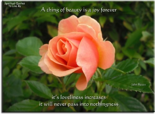 Keats quote on photo of rose - Spiritual Quotes To Live By