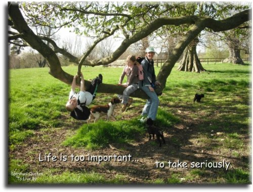 Life is - BLOG