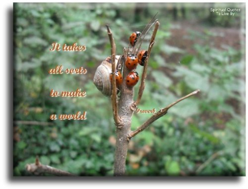 It takes all sorts to make a world - Proverb - Spiritual Quotes To Live By