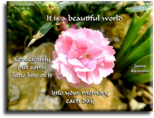 It is a beautiful world consciously put some little bits of it into your memory each day - James Alexander - Spiritual Quotes To Live By