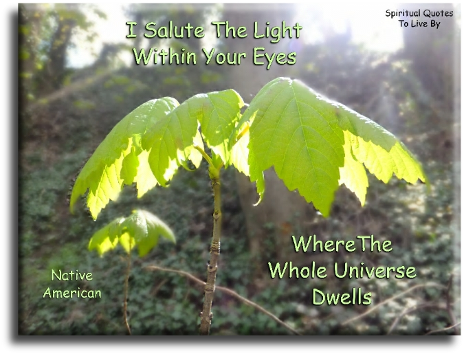 I salute the Light within your eyes, where the whole Universe dwells - Native American - Spiritual Quotes To Live By