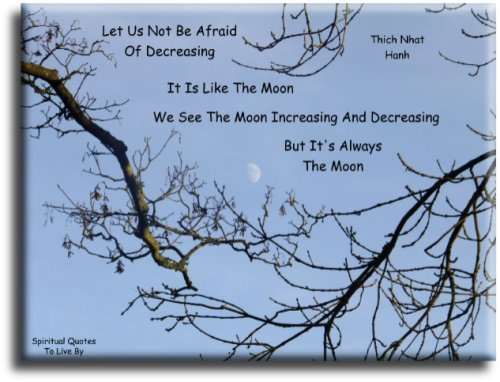 Let us not be afraid of decreasing. It is like the moon, we see the moon increasing and decreasing, but it is always the moon - Thich Nhat Hanh - Spiritual Quotes To Live By