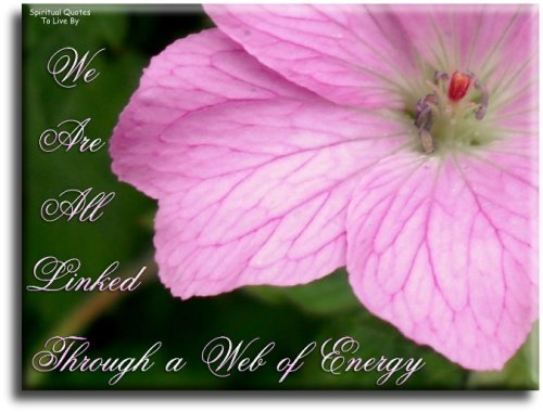 We are all linked through a web of energy - Spiritual Quotes To Live By