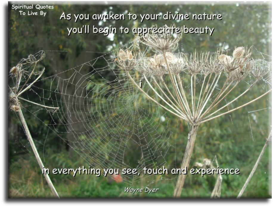 Wayne Dyer quote: As you awaken to your divine nature, you'll begin to appreciate beauty in everything you see, touch and experience. - Spiritual Quotes To Live By