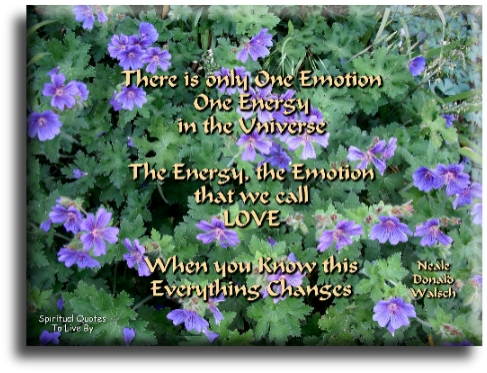 Neale Donald Walsch quote: There is only one emotion, one energy, in the Universe...  the energy, the emotion that we call Love. When you KNOW this, everything changes. Spiritual Quotes To Live By
