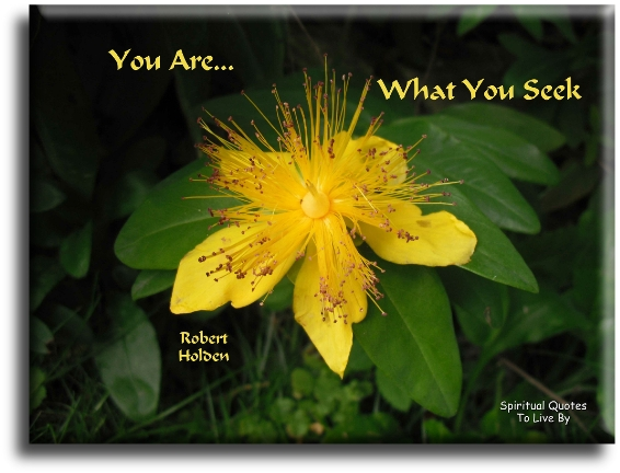 You are what you seek - Robert Holden - Spiritual Quotes To Live By