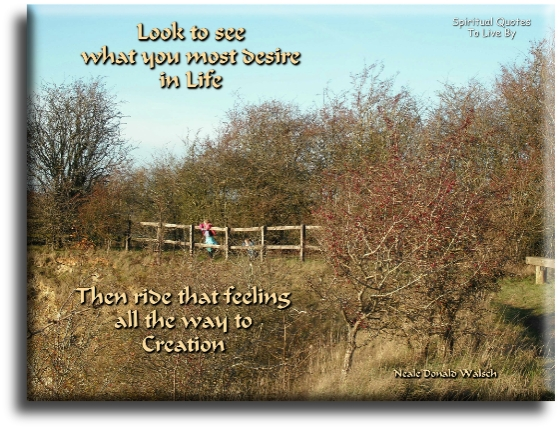 Neale Donald Walsch quote: Look to see what you most desire in your life, then ride that feeling all the way to creation. Spiritual Quotes To Live By