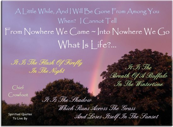 Chief Crowfoot quote: A little while and I will be gone from among you, when I cannot tell. From nowhere we came, into nowhere we go. What is life?.. - Spiritual Quotes To Live By