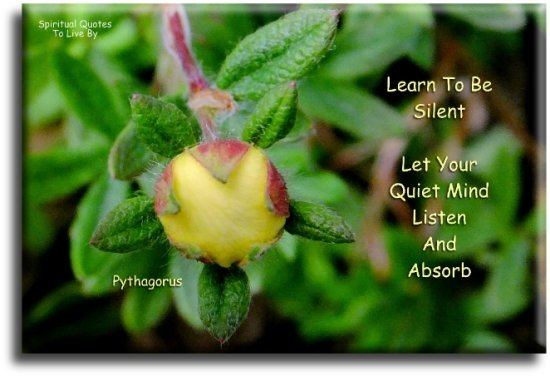 Pythagoras quote: Learn to be silent. Let your quiet mind listen and absorb. - Spiritual Quotes To Live By