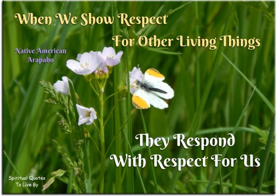 When we show respect for other living things, they respond with respect for us - Native American, Arapaho - Spiritual Quotes To Live By